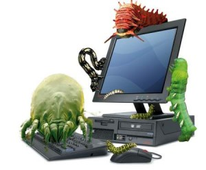 Computer bugs,viruses and worms can be avoided with the right security software.
